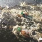 【悲報】東京湾を泳いだトライアスロン選手さん、嘔吐してしまう