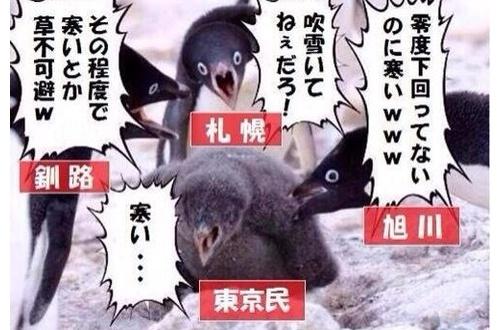 東京民「雪やべーwwwwwww」北海道民「!!」モサッモサッ(走り寄って来る音)のサムネイル画像