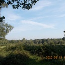 My favorite spots in Ruislip Lido:ライスリップ・ライドのお気に入り場所