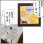 ポケット付きプリーツマスクの作り方改訂版【ミシン、アイロン無し】
