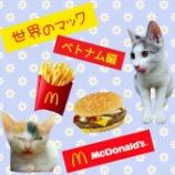 『【世界のマック】を食べてみよう!【ベトナム編】』の画像