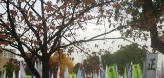 「尖閣を守れ!」『頑張れ日本』横浜市内でデモ…一方「APEC反対」と竹馬に乗りながらデモする団体も