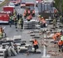 オーストリアの幹線道路でトラックが事故を起こし、数千羽の食用のニワトリが脱走