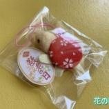 『花の季苑/くるみボタンでマスコット作り★』の画像