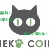 『NEKO COIN 【NEKO】 保護猫活動に特化した仮想通貨! 内容は?将来性は?詳しく解説!🐈 仮想通貨のすすめ ネコ、猫コイン』の画像
