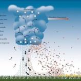 『オーストラリアの雷雨喘息』の画像