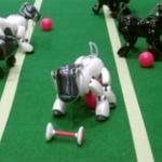 いつか人類はロボットに支配される? 第2機械時代の到来、危険を理解しなければならない
