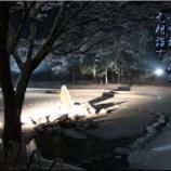 『元朝詣で』の画像