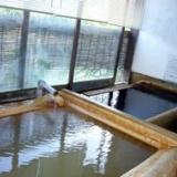 大分の炭酸泉「長湯温泉」に行ってきました