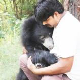 『助けたクマからの抱擁』の画像