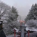 『4月の雪』の画像