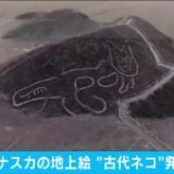 新たな「ナスカの地上絵」が発見されるも絵柄が・・・・