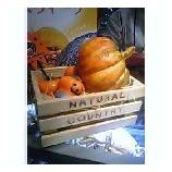 『かぼちゃ』の画像
