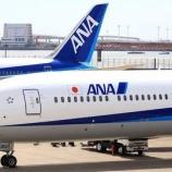 『【絶望】ANA、ガチのマジで終了!大赤字によって飛行機も手放す模様』の画像