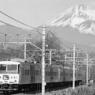 若き日の185系、修善寺「踊り子」 Mishima