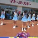 2014年 第11回大船まつり その48(イトーヨーカドー前/鎌倉女子大学チアリーダー部LOVERS)の5