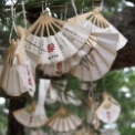 日本三大文殊・智恩寺~天橋立~出石神社
