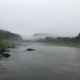 『小鮎と遊ぶ43(2020/6/13 雨の安曇川)』の画像