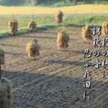 『錦秋の音』の画像
