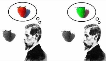 哲学者「私が見ている「青」が他人にとっての「赤」であるということを否定できない」