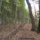 『2011小生の秋③』の画像