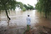 """""""南京市が水浸し"""" 三峡ダム放水、台風影響で楽観できない状況に"""