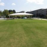 『9月4日 芝生広場がオープンします!(8/30)』の画像