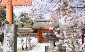 一人で京都をツーリングしてきた