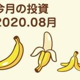 『2020.08今月の投資。v( ̄∇ ̄)v』の画像