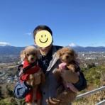 犬と本と私、サランとアモと一緒に。