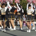 第17回湘南台ファンタジア2015 その37(明治學院大学應援團部)