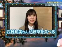 【日向坂46】西村知美さん、河田陽菜の謝罪に対してブログでコメントを発表wwwwwwwwwww