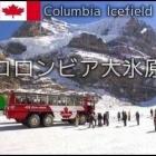『コロンビア大氷原』の画像