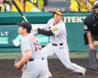 【阪神】ナバーロ逆転残留も、安定した打撃と性格を評価