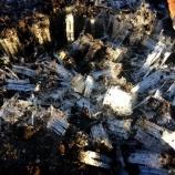 『戸田公園駅北東・まんようの花の道に霜柱が立つ冬の朝になりました!』の画像