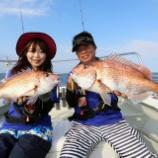 『9月12日 更新 釣りビジョン取材釣行 クレイジーオーシャン』の画像