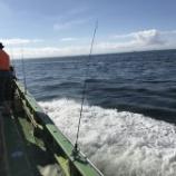『海釣り』の画像