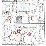白文鳥P田ピイの日記(T)