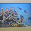 またまた海底風景です…