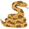 【衝撃事実】ニシキヘビの寿命やべえええええ…横浜おわたwwwwwww