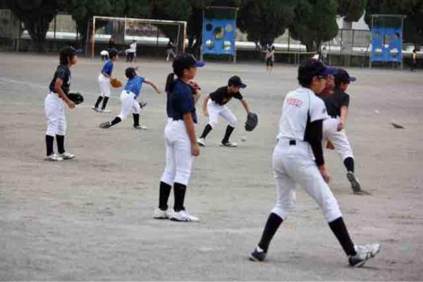 学童 栃木 野球 したらば 県