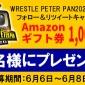 ✨#WrestlePeterPan 記念フォロー&RTキャン...