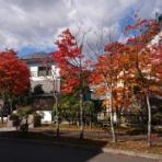 釧路市芦野の自家焙煎「 コーヒー豆の店サンサン」