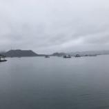 『ディープサヨリ 鳴門ウチノ海(2020/2/29)』の画像