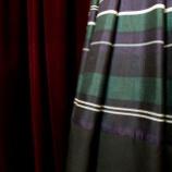 『ボーダープリーツスカートが完成。』の画像