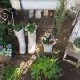 *窓から小庭を覗いてみたり。。。