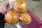 柑橘類の相場は200円!?神宮寺、今堀ぶどう園さんの伊予柑を食べてみた!