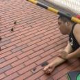 【画像】カープ中崎さん、鳥に夢中