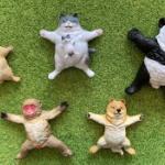 動物たちが大の字でグースカなフィギュアがガチャに登場!「TAMA-KYU だいのじ」