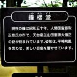 『毛越寺へ❸』の画像